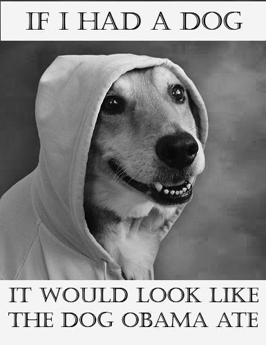 Obama dog help us